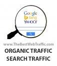 Buy Organic Traffic - Organic Search Traffic