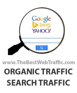 Buy Organic Traffic - Organic Search Traffic